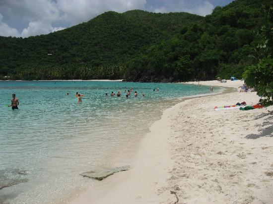 Marriott's Frenchman's Cove: Our favorite beach on the island of St John