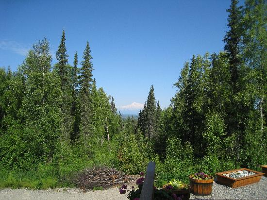 Talkeetna Treetop Chalet : Mt. McKinley view from chalet front door