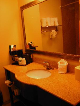 La Quinta Inn & Suites Cedar Hill : Half the bathroom.