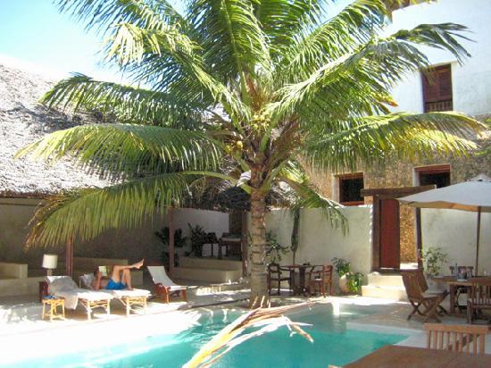 Lamu House Hotel: Swimming pool at Lamu House