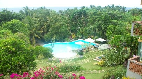 Amarela Resort: The infinity pool viewed from their restaurant