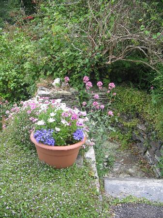 Boscastle House: The garden path leading to the reading area in front of the b&b