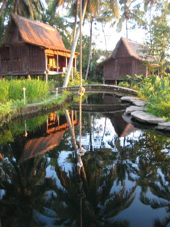 Bambu Indah: Evening hues