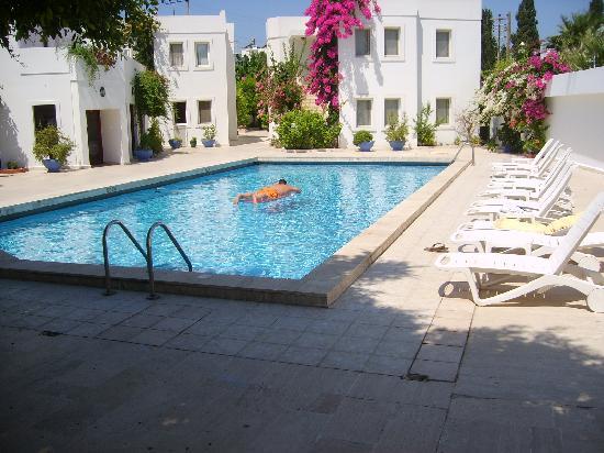 Seckin Konaklar Hotel: pool