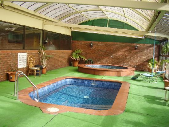 Elm Court Motor Inn: Elm Court Motel, Albury NSW - pool and jacuzzi