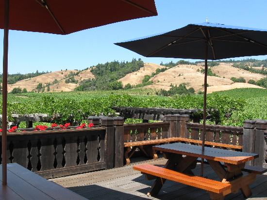 Navarro Vineyards: One of the lovely picnic areas