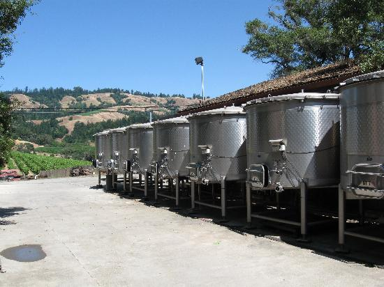 Navarro Vineyards : Tour Photo 1