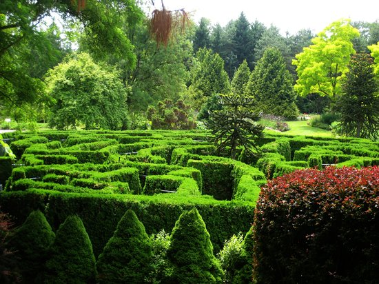 VanDusen Botanical Garden (Vancouver)   All You Need To Know Before You Go  (with Photos)   TripAdvisor
