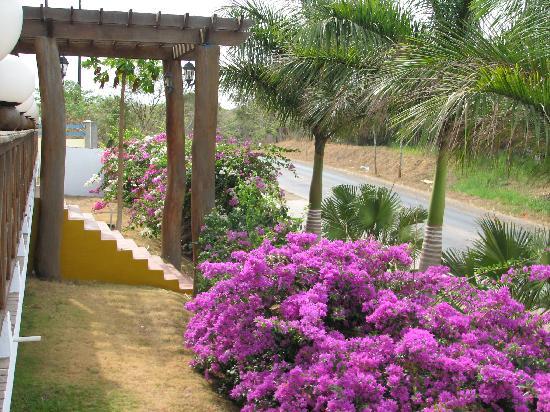 Hotel City House Los Guayacanes: Hotel Los Guayacanes, Chitre.