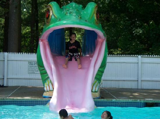 ‪‪Seabrook Inn‬: frog slide in the big pool‬