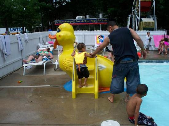 ‪‪Seabrook Inn‬: duck slide in kiddie pool‬