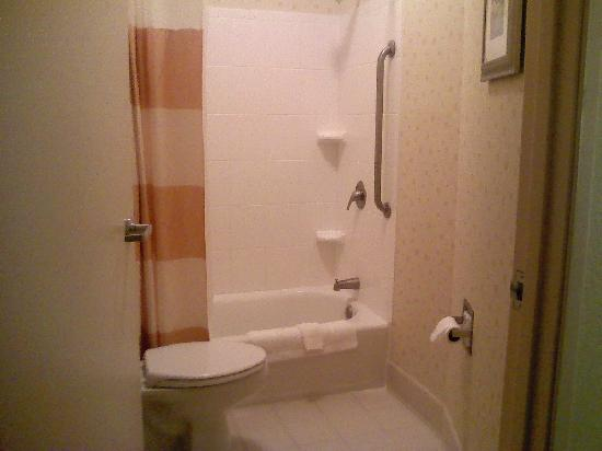 SpringHill Suites Morgantown: Large Bathroom