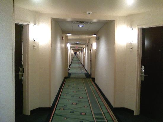 SpringHill Suites Morgantown : Clean-Well Lit Halway