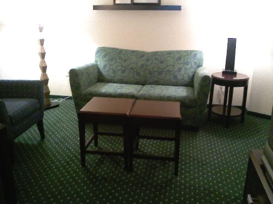 SpringHill Suites Morgantown: The Sofa/Bed