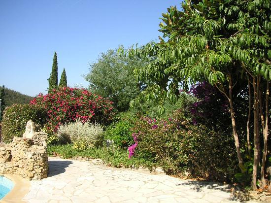 Hotel New Life: le jardin