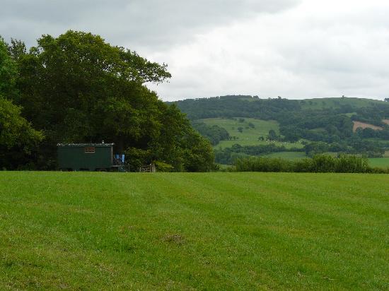 Mandinam: View across the field to the hut