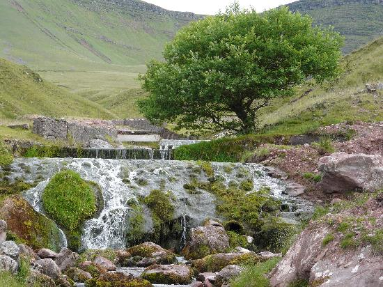Mandinam: Path up to the Llyn y Fan Fach lake in the Brecon Beacons
