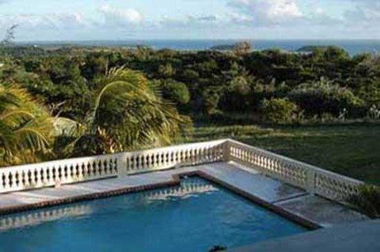 Cane Garden Villas: View from pool to ocean