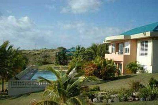 Cane Garden Villas: Main house and pool