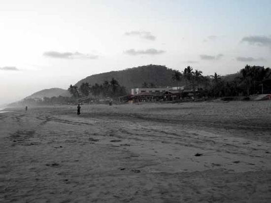 El Burro Borracho: Towards Sunset