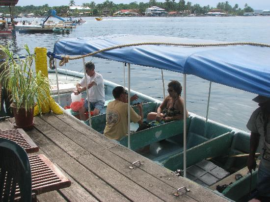 Hotel Bocas del Toro: Catching the water taxi