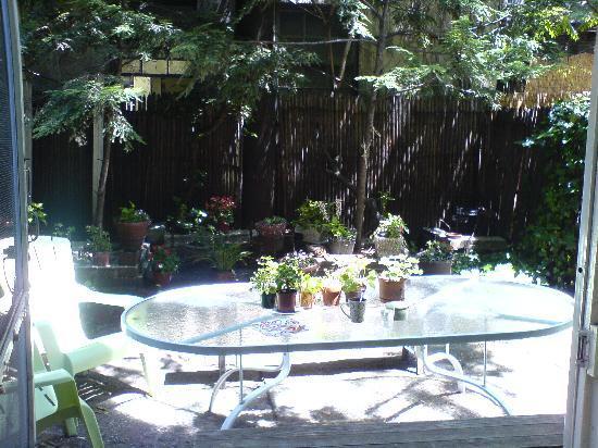 Chelsea Center Hostel: le jardin