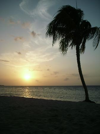 traumahfter Sonnenuntergang