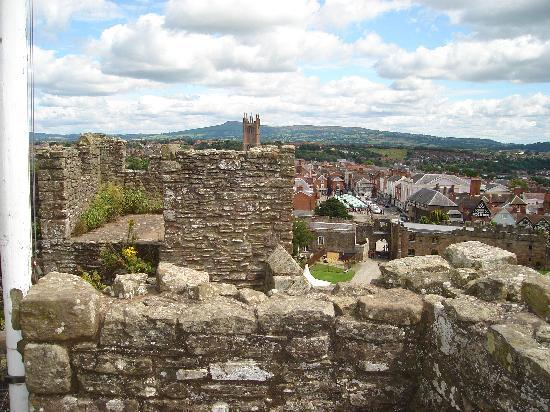 Overton Grange Country Hotel: Ludlow from the castle tower