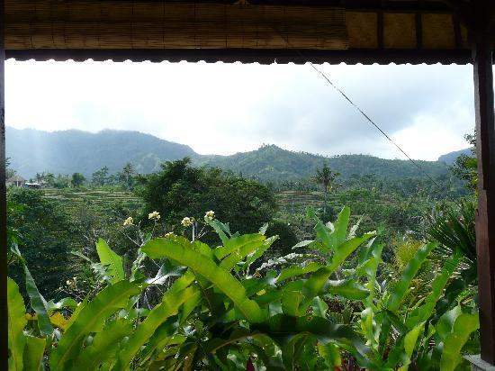 Sidemen, Indonesia: Vue de la chambre