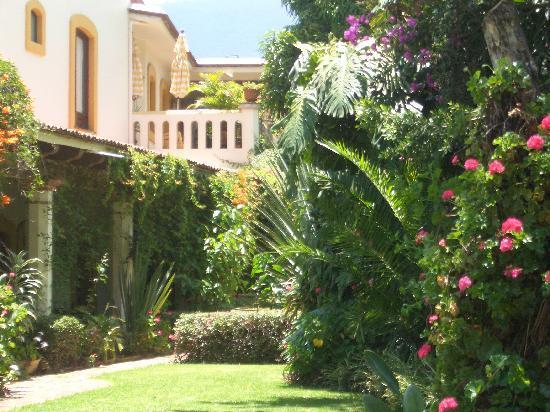 Hotel Hacienda Los Laureles Spa : Beautiful hacienda