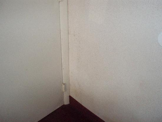 Best Budget Inn Sandusky : wall cover fell due to mold