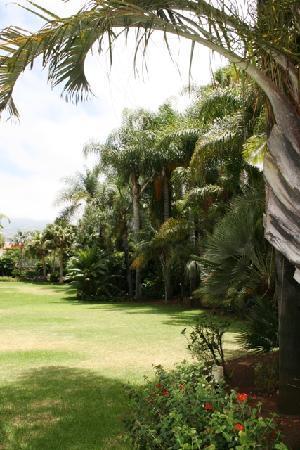 Hotel Tigaiga: Gardens 1