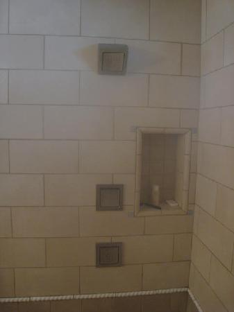 Anderson Inn: Three shower heads and ample place for shampoo