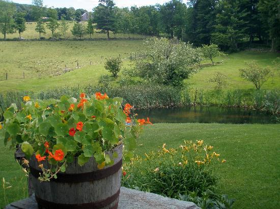 The Inn at Round Barn Farm: Flowers and ponds