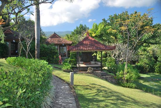 The Damai: garden