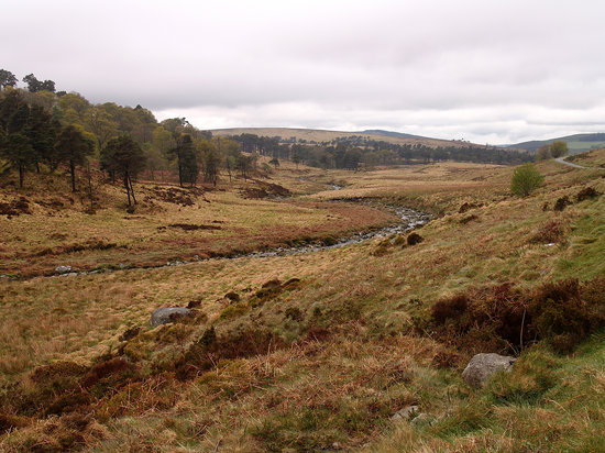 Glendalough Village, Ireland: The Wicklow Mountains near Sally Gap