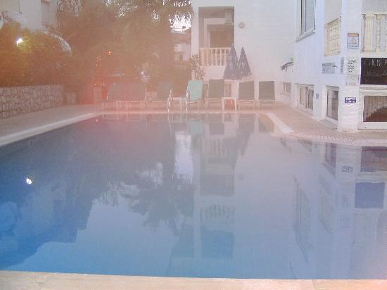 Oylum Garden Hotel: Pool