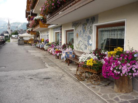 Hotel Cesa Padon: entrata dell'hotel