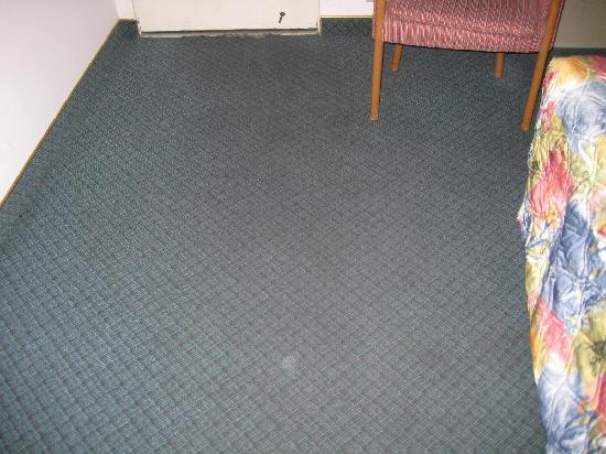 Alamo Inn Suites Carpet Will Make Your Feet Black