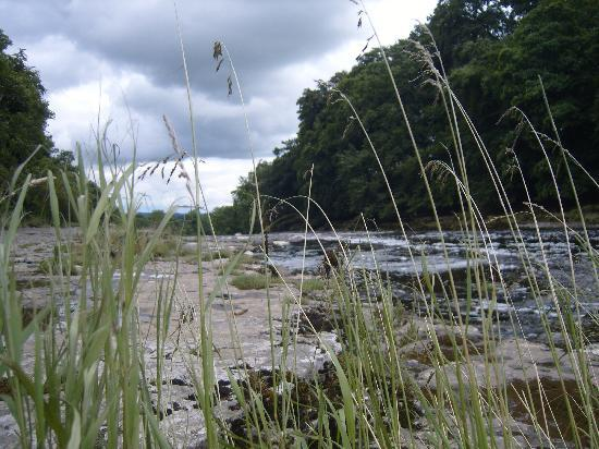 Holmedale Bed and Breakfast: Aysgarth Falls close to Askrigg