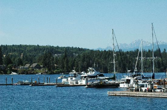 The Resort at Port Ludlow: View from beside restaurant