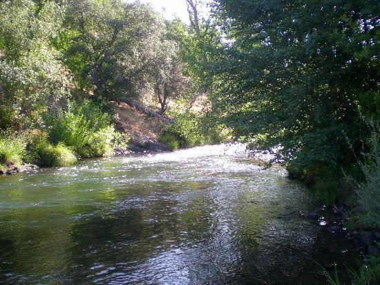 Paynes Creek, CA: The river