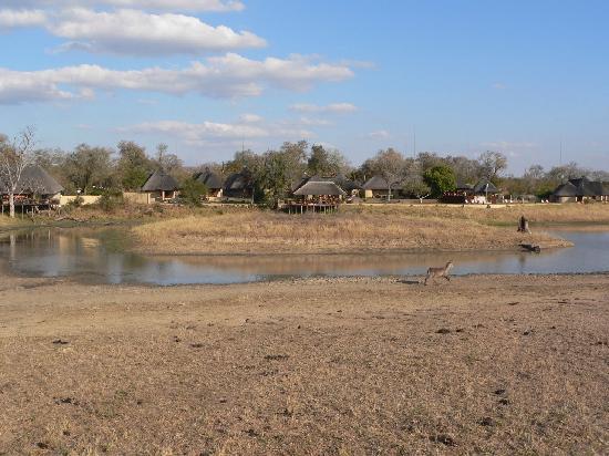 Arathusa Safari Lodge: View of the lodge.