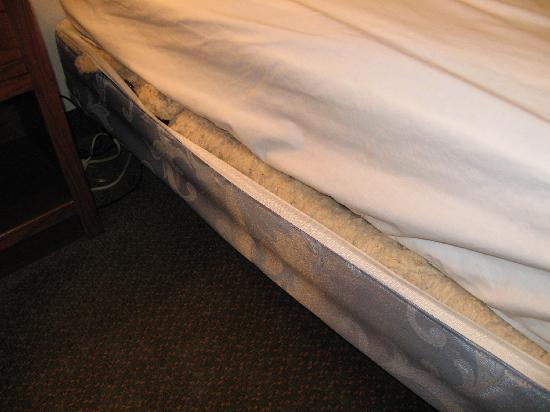 Rodeway Inn Larned : The torn open boxspring