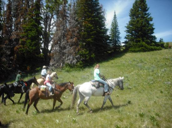 Rimrock Ranch : Just one of several fantastic rides!