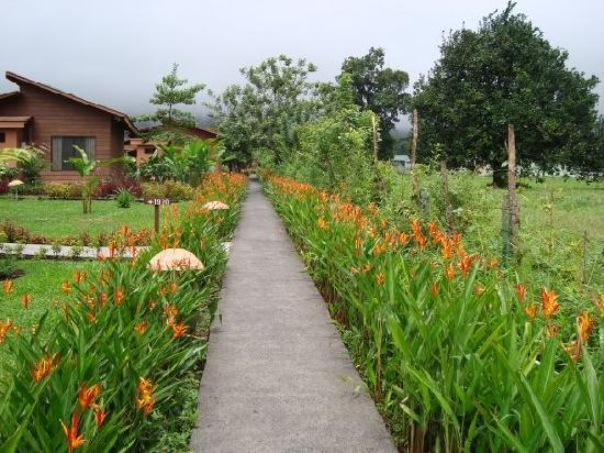 Bellos jardines fotograf a de hotel el silencio del campo for Jardines de campo