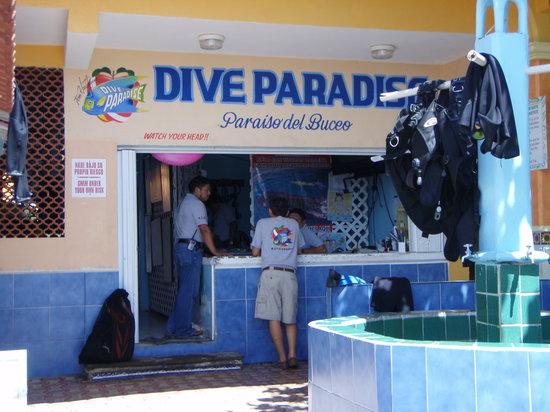 Dive Paradise Cozumel