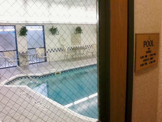 Hampton Inn Findlay: Hotel Pool - Inside