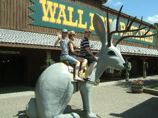 Holiday Inn Express North Platte: At Wall Drug, Wall, SD