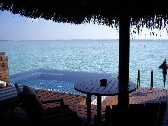 Taj Exotica Resort & Spa: The plunge pool and deck - Villa 430